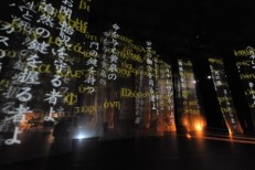 Grief of Eurydice, Yokohama 2011